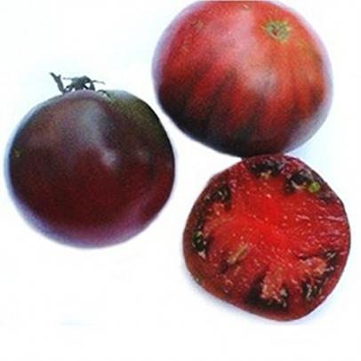 Cherokee purple Tomate