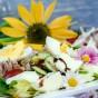 Den Sommer genießen: frischer Salat