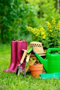 Gardening tools on green background and grass