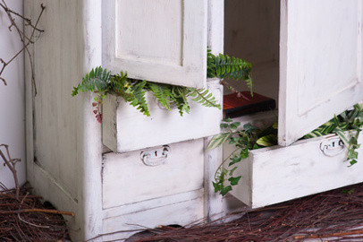 old decorated wooden white cupboard with plants